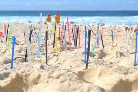 Reusable Straws: Small Action For Green Planet